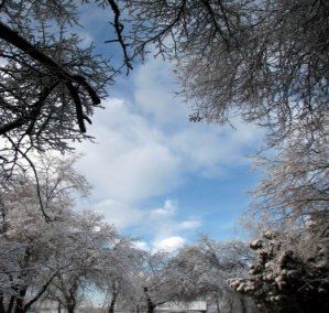 http://proza.ru/pics/2008/12/13/3.jpg?6061