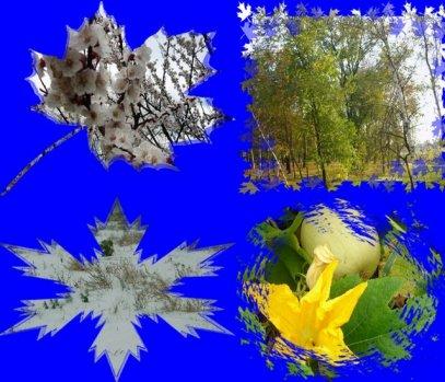 http://www.proza.ru/pics/2009/11/16/1557.jpg?1372