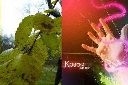 http://www.proza.ru/pics/2009/11/19/1325.jpg?2413